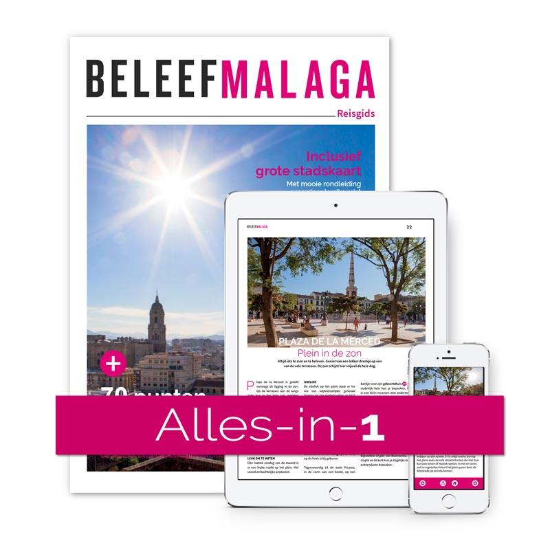 Reisgids Malaga Alles in 1